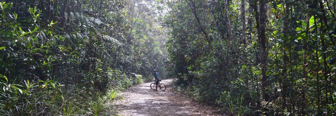 White River by mountain bike