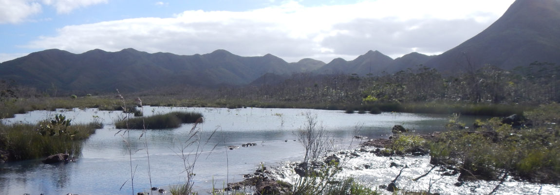 Liaison capture Netcha par la vallée du creek Pernod